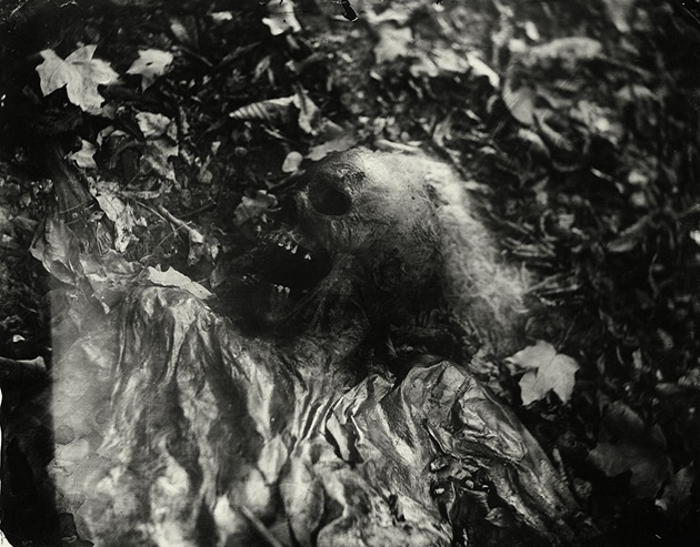 Sally_Mann_Body_Farm_BW_04 (630x493)
