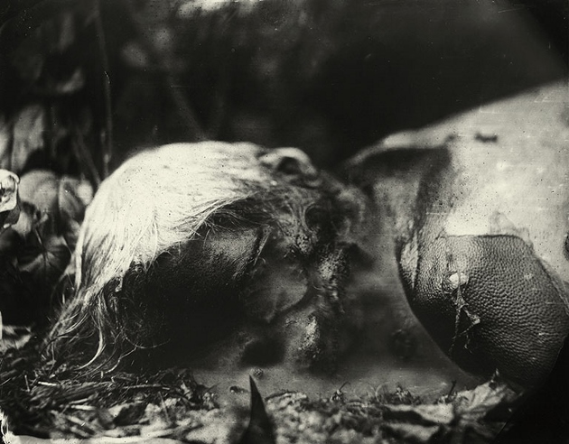 Sally_Mann_Body_Farm_BW_06 (630x492)